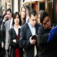 Суд не считает пособие по безработице необходимым для участников ООО